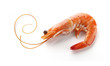 Shrimp - 39655659