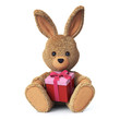 Stuffed bunny with present box