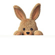 Stuffed bunny peeking behind blank board - horizontal