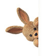 Stuffed bunny peeking behind blank board - upright