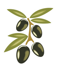 Stylized olives symbol isolated on a white background