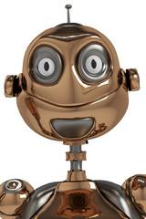 funny robot id portrait