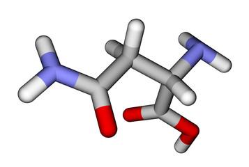 Amino acid asparagine 3D molecular model