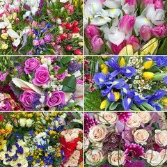 six different nice flower bouquet set background