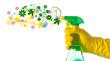 Pulizie di primavera - 39665628