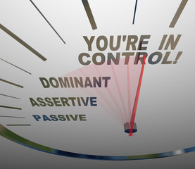 You're in Control Speedometer Agressive and Assertive