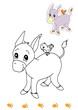 animali da colorare, asino