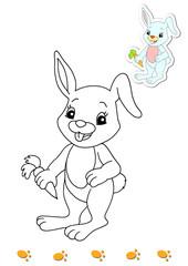 animali da colorare, coniglio