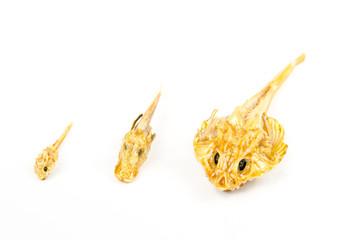präparierte kleine Fische, Strandfund