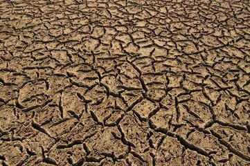 Vega de río seca y erosionada