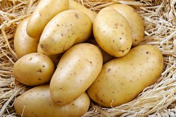 Potatoes on straw