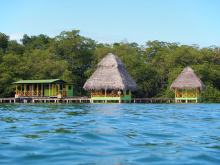 Tropical cabins