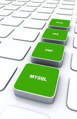 3D Pads Grün - HTML CSS PHP MYSQL 4