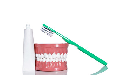 Artificial teeth and a toothbrush