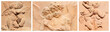 banner with angelic images in tuscan terracotta
