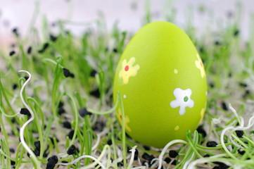 Pisanka jajko wiosna rzeżucha