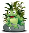Rana Cartoon su Pietra-Cartoon Frog on Nature-Vector