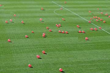pink balloons flying over the grass of the stadium