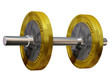 Euro Hantel, dumbbell with euro coin as a weight-disk