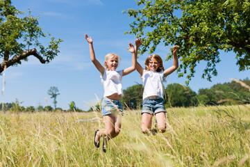 Glückliche Kinder auf einer Wiese