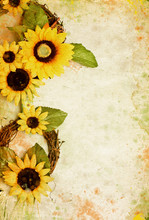 Grunge retro  with sunflowers and copy space