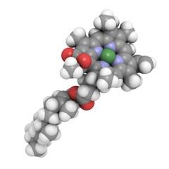 Chlorophyll A: molecular structure (3D)