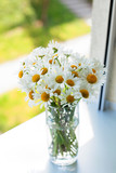 daisies on a window-sill