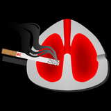Smoking is harmful to the lungs poster