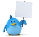 Fototapety Blue bird