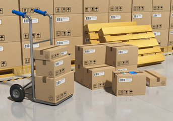 Storage warehouse with packaged goods