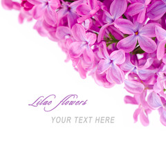 Lilac flowers with sample text