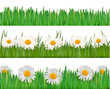 Fresh spring and daisy borders  Vector
