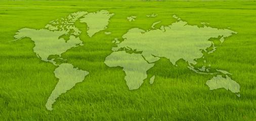 World map on grass field.
