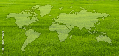 World map on grass field.