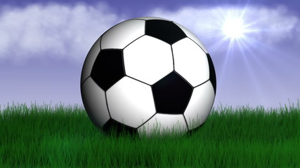 Football Ball in Nature - HD1080