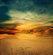 Sandy desert at sunset time