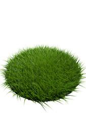 herbe détouré