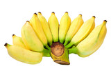 Isolated bunch of banana
