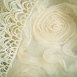 Lace and chiffon vintage background