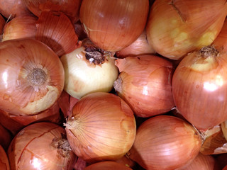 Close-up of fresh white onions
