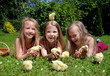 Little girls playing with chicks