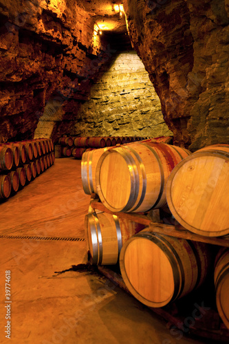 wine barrels in a winery, France
