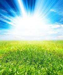 vivid sunlight