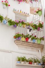 Terrazzo fiorito e vasi colorati