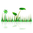 grass green illustration with flower