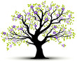 spring tree with pink flowers white background