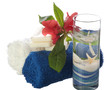 cleaning products of the body