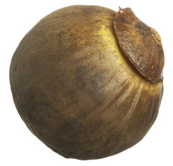 The sapote on white background