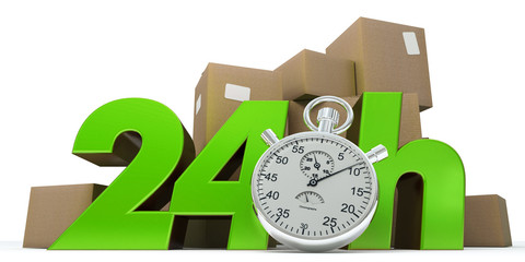 24 hrs guaranteed delivery