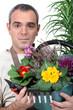 Florist holding flower arrangement